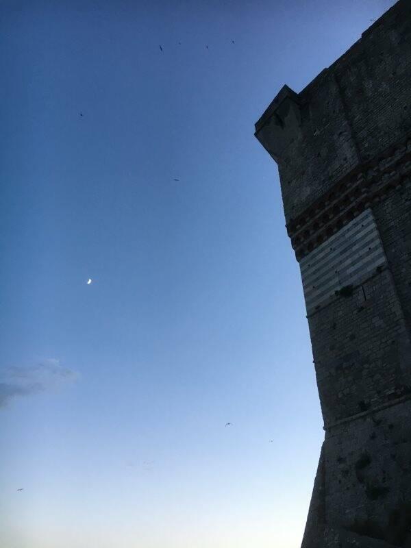 Castello di Lerici con la luna