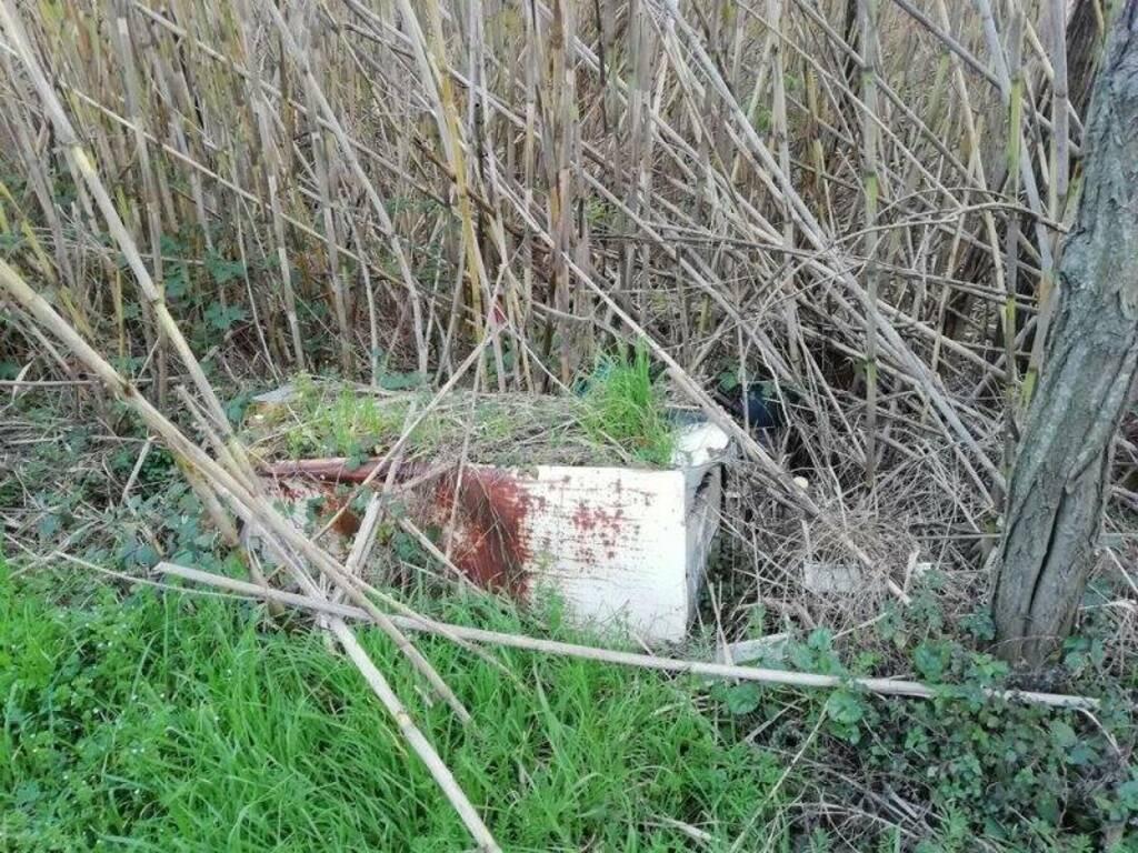 Elettrodomestico abbandonato lungo il percorso fluviale