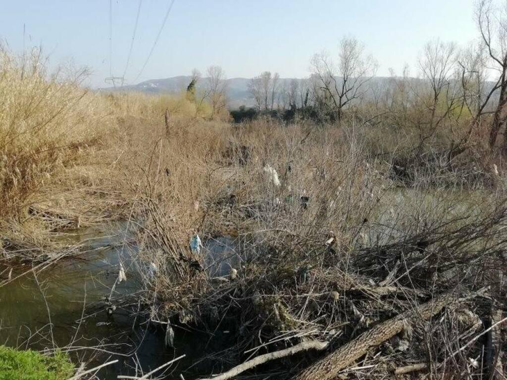Vegetazione 'vestita' di rifiuti plastici, lungofiume tra Boettola e Battifollo