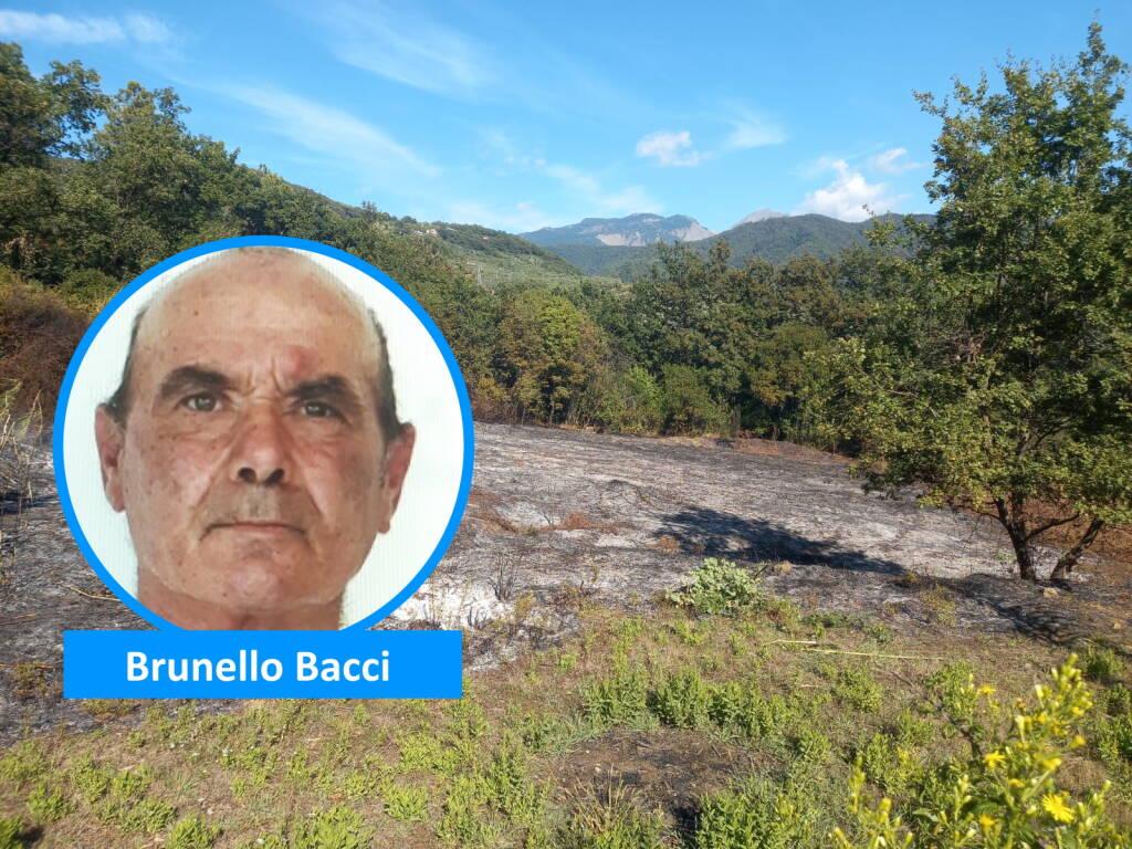 Brunello Bacci